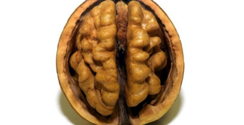 10 Amazing Benefits of Walnuts You May Not Know About